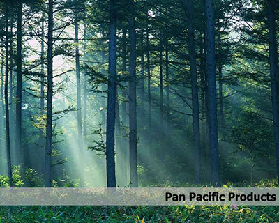 Pan Pacific Products, Inc.